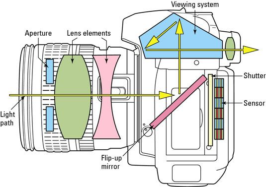 ���� - Decidir sobre uma câmera Visor SLR Digital