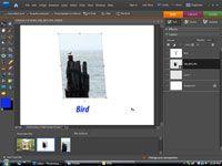 ���� - Exibição de fotos digitais na Internet