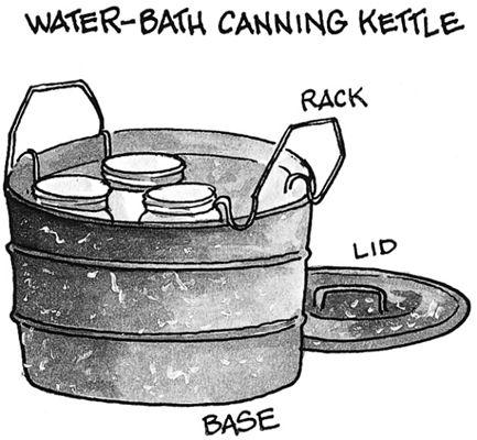 ���� - Conservação de alimentos Métodos: Canning, congelamento e secagem