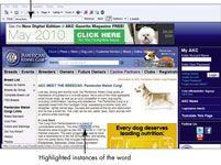 ���� - Para Idosos: Procurar uma página Web utilizando o Internet Explorer