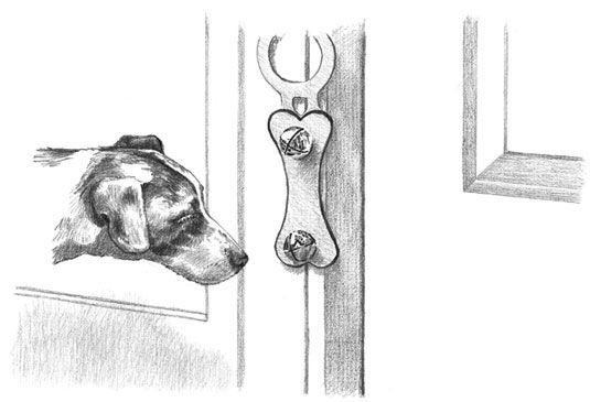 Ensinar o seu cachorro para tocar um sino quando ela precisa ir para fora é mais fácil do que você pensa. [Crédito: Illu