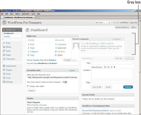 ���� - Como Organizar o painel WordPress