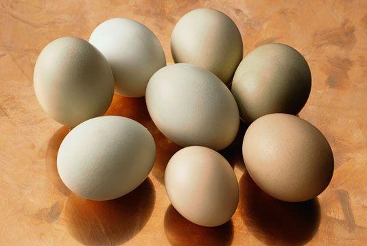 ���� - Como comprar ovos