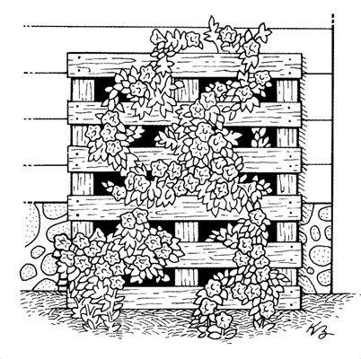 ���� - Como criar Urban Art Garden partir de materiais reciclados