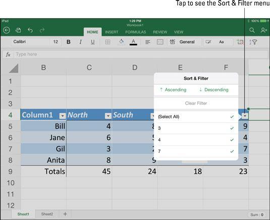���� - Como apresentar os dados de uma tabela do Excel no iPad