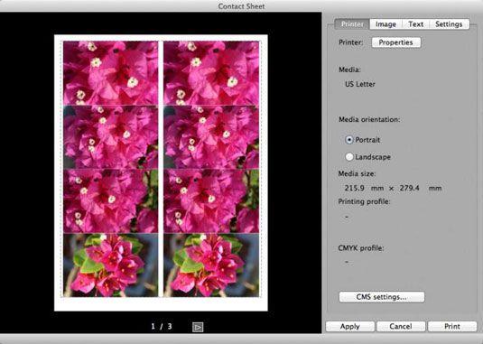 ���� - Como imprimir uma folha de contactos no Digital Photo Professional em sua Canon EOS 6D