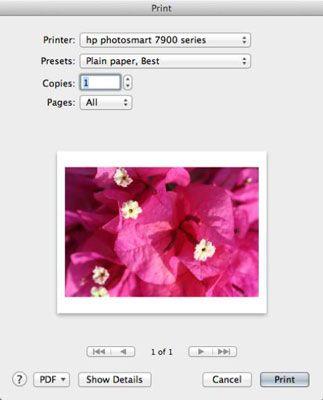 ���� - Como imprimir uma imagem no Digital Photo Professional em seu Canon EOS 6D