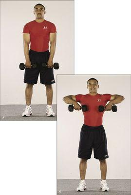 ���� - Como fortalecer seus ombros com a Linha Vertical