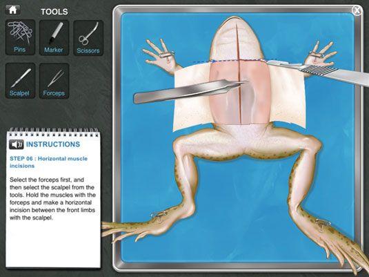 ���� - Aplicativos Educação iPad para matemática e ciências salas de aula
