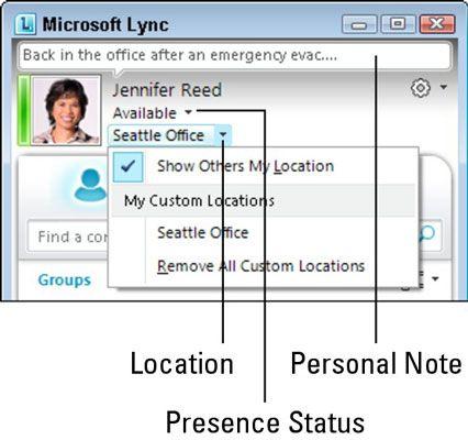 ���� - Que as pessoas saibam seu status de presença com Lync Online