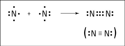 formação da ligação tripla de azoto.