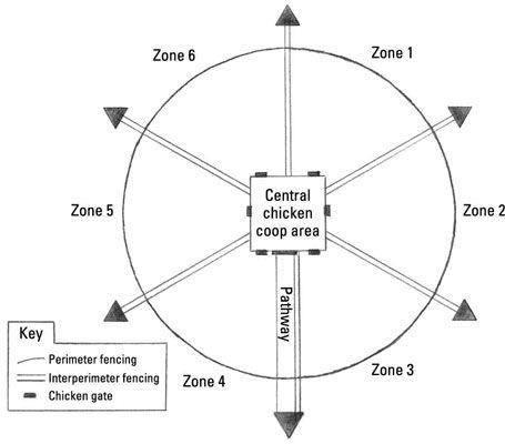 ���� - Fornecer suas galinhas confinadas Gama na rotação Runs