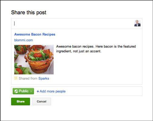 Ao clicar no botão Compartilhar no Google+ invoca esta caixa de diálogo.