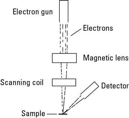 Diagrama de um microscópio eletrônico de varredura.