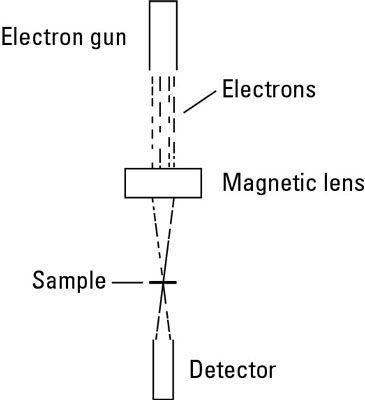 Diagrama de um microscópio eletrônico de transmissão.