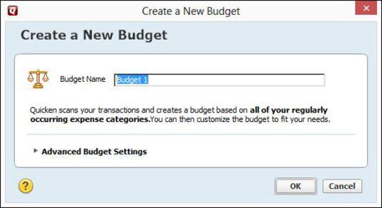 A caixa de diálogo Criar novo orçamento.