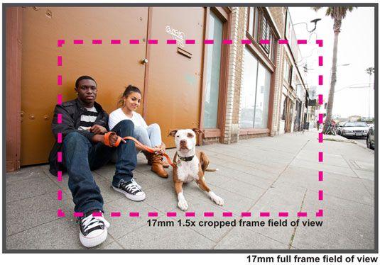 ���� - da sua câmera Tamanho Sensor ao fotografar cães